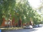 dvosoban-stan-55m2-centralno-grijanje-pvc-stolarija-dragonjska-ul-slika-108118418